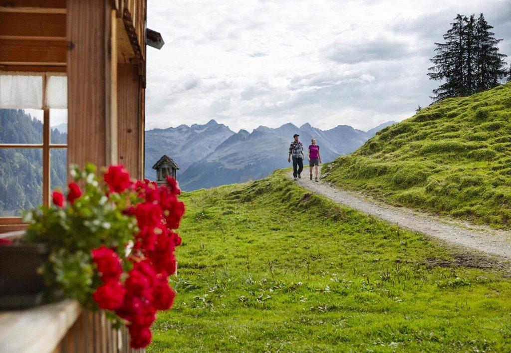 Wandern im Bregenzerwald_Alpe Sattelegg Au 1 (c) Adolf Bereuter_Bregenzerwald Tourismus - Kopie
