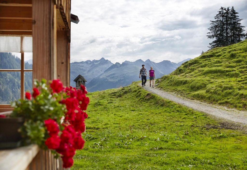 Wandern im Bregenzerwald, Alpe Sattelegg Au, © Adolf Bereuter, Bregenzerwald Tourismus