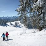 Winterwanderung am Brüggelekopf in Alberschwende, Ludwig Berchtold