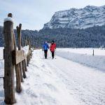 Winterwandern Bregenzerwald, Ludwig Berchtold