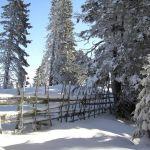 Winterwandern im Lavanttal