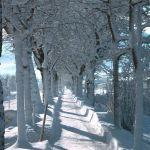 Winterwandern in Eben