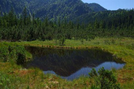 Naturschutzgebiet Leckermoos, TVB Göstlinger Alpen