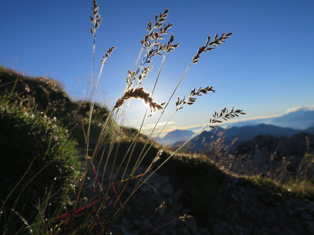 Wandern, © Österreichs Wanderdörfer, Karmen Nahberger