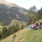 TVB Kitzbüheler Alpen - Brixental