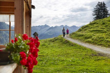 Wandern im Bregenzerwald, Alpe Sattelegg Au © Adolf Bereuter, Bregenzerwald Tourismus