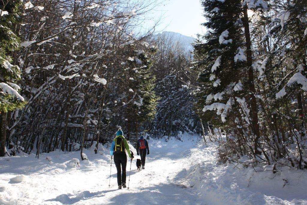 Winterwanderung zur Klagenfurter Hütte, © Österreichs Wanderdörfer, Corinna Widi