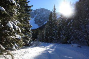 alles rund ums Winterwandern