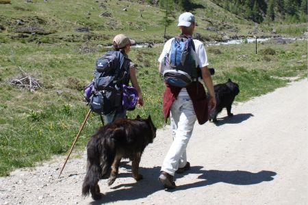 Wandertipp mit Hund, © Österreichs Wanderdörfer, Corinna Widi