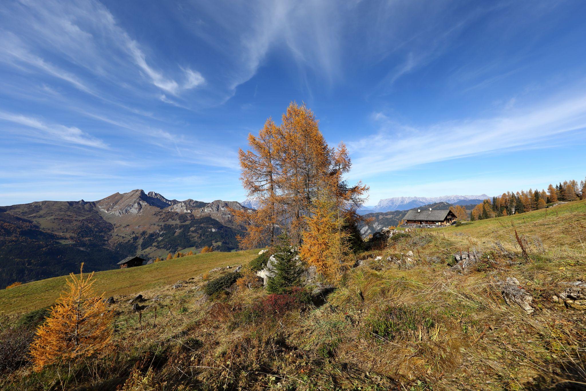 Saukaralm im Herbst, © www.grossarltal.info