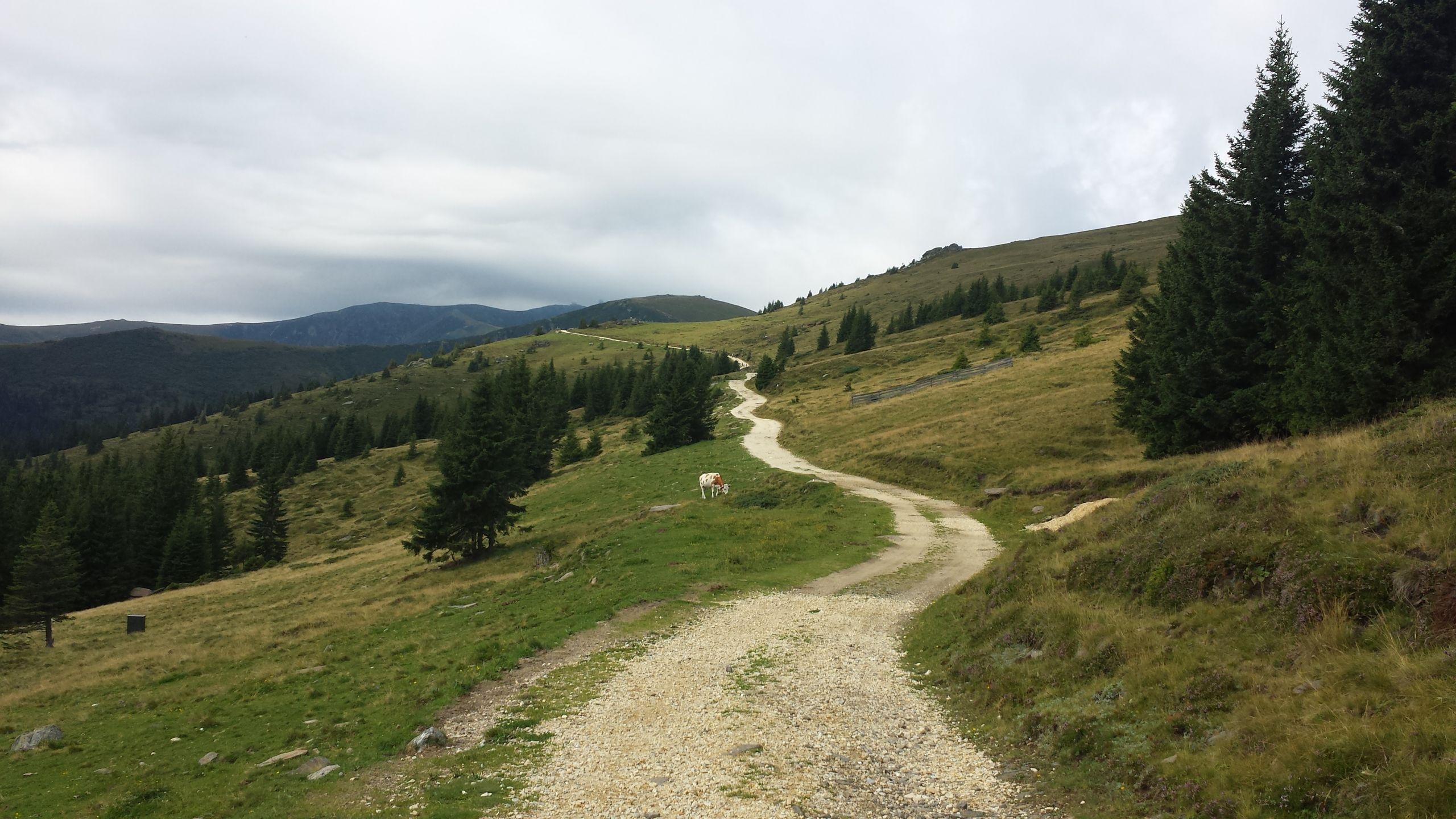 Unterwegs am Koralm Kristall Trail, © Österreichs Wanderdörfer, Elisabeth Pfeifhofer