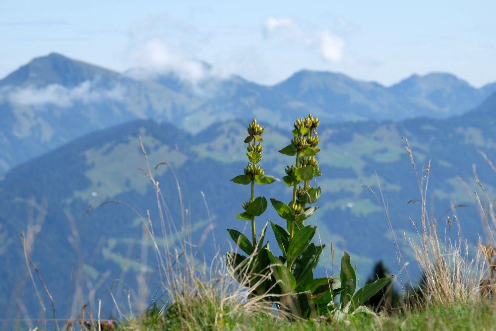 Wunderschöne Aussicht, © Hitsch Kasper