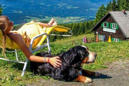 Wandern mit Hund auf der Tonnerhütte