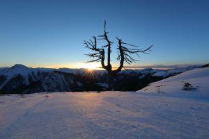 Rund ums Winterwandern