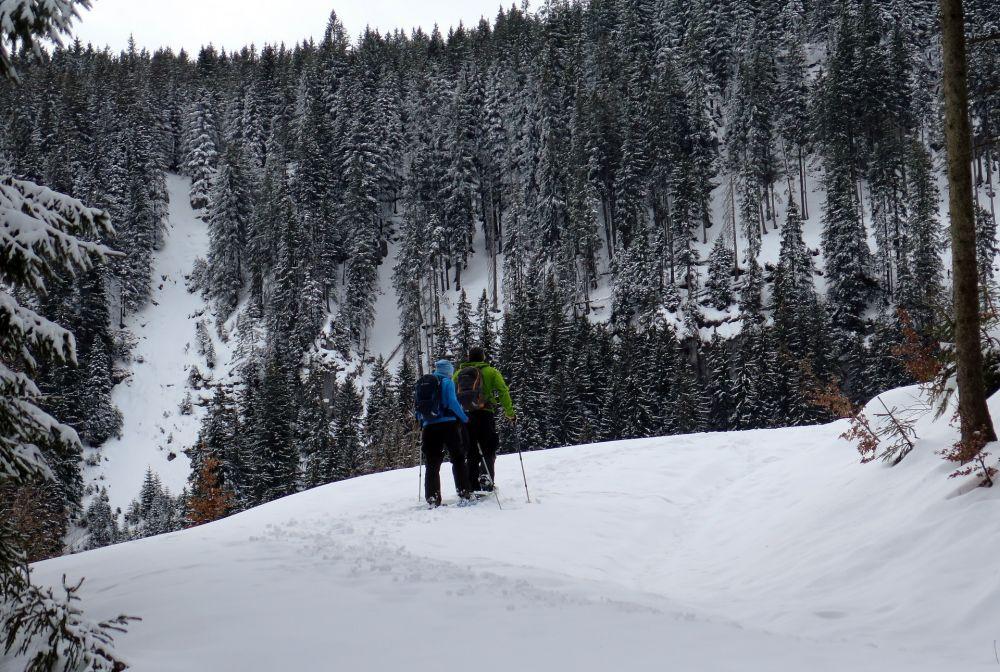 Schneeschuhwanderung, Pixabay_moerschy