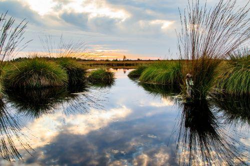 Wandern im Moor, pixabay
