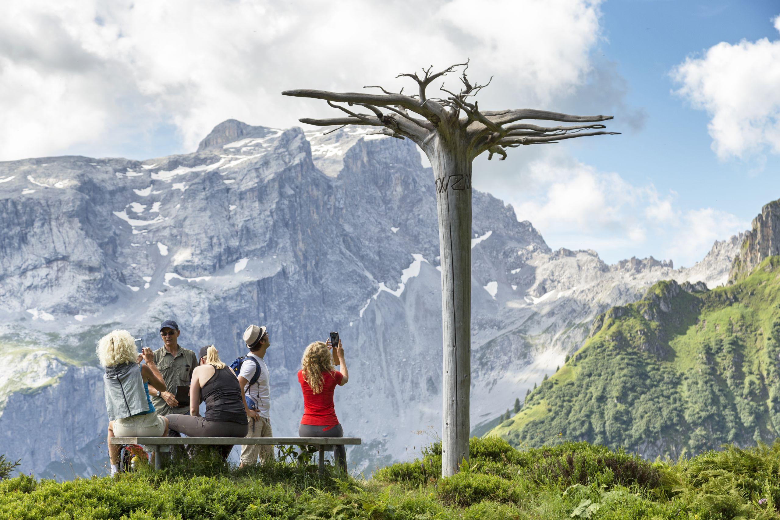 Der Mythenbaum - Gauertaler AlpkulTour, © Andreas Haller - Montafon Tourismus GmbH, Schruns