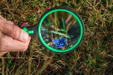 NaturLesen, © TVB Naturpark Zirbitzkogel-Grebenzen, Mediadome