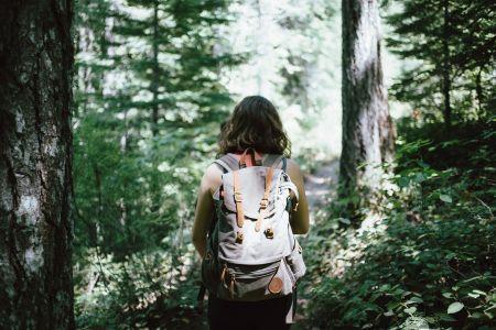 Wandern, Pixabay, Free-Photos