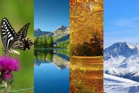 Jahreszeiten, pixabay