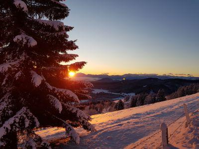 Winter_Schnee © Elisabeth Pfeifhofer