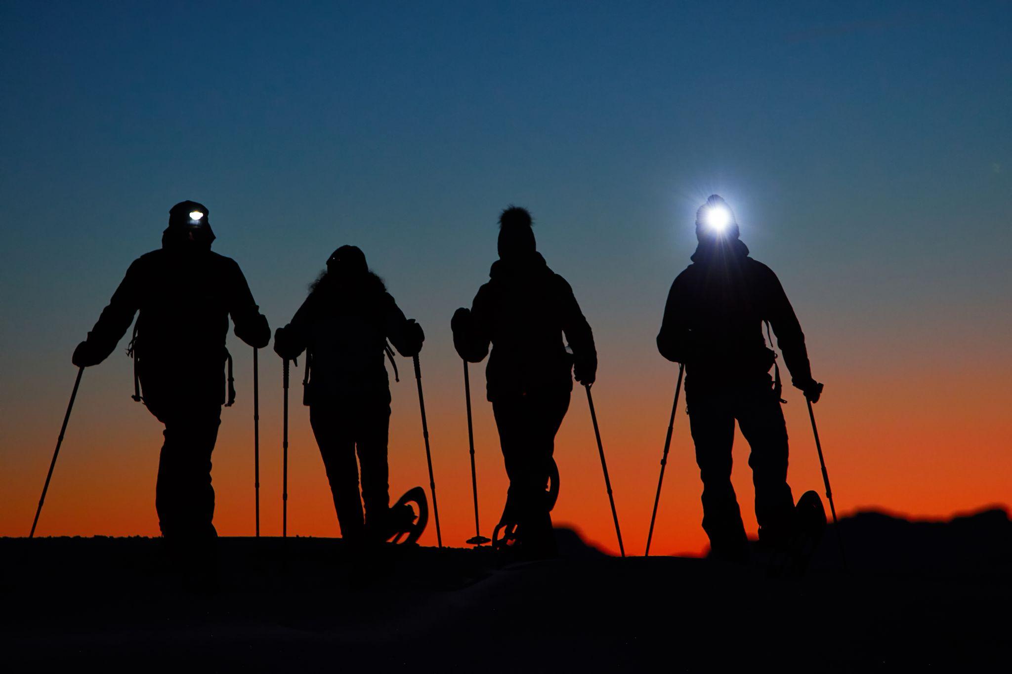 Vollmondschneeschuhwandern am Zettersfeld, © Nationalpark Hohe Tauern, Willi Seebacher