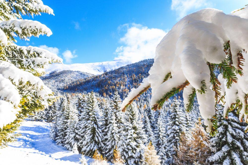 Winterlandschaft © TVB Naturpark Zirbitzkogel-Grebenzen, Brandlion