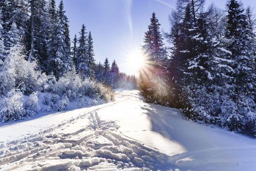 Winterwandern © TVB Naturpark Zirbitzkogel-Grebenzen, Mediadome