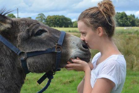 Mädchen küsst Esel, Pixabay