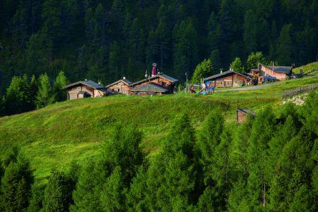 Almzeit in Sölden, Gampe Thaya, © Ötztal Tourismus, Bernd Ritschel