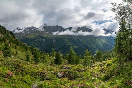 Debanttal, © Nationalpark Hohe Tauern, Hannah Assil und Michael Kastl
