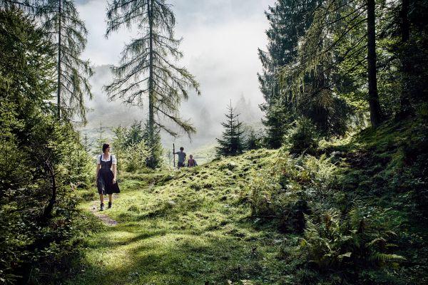 Wandern in St. Johann in Tirol, © Staudinger