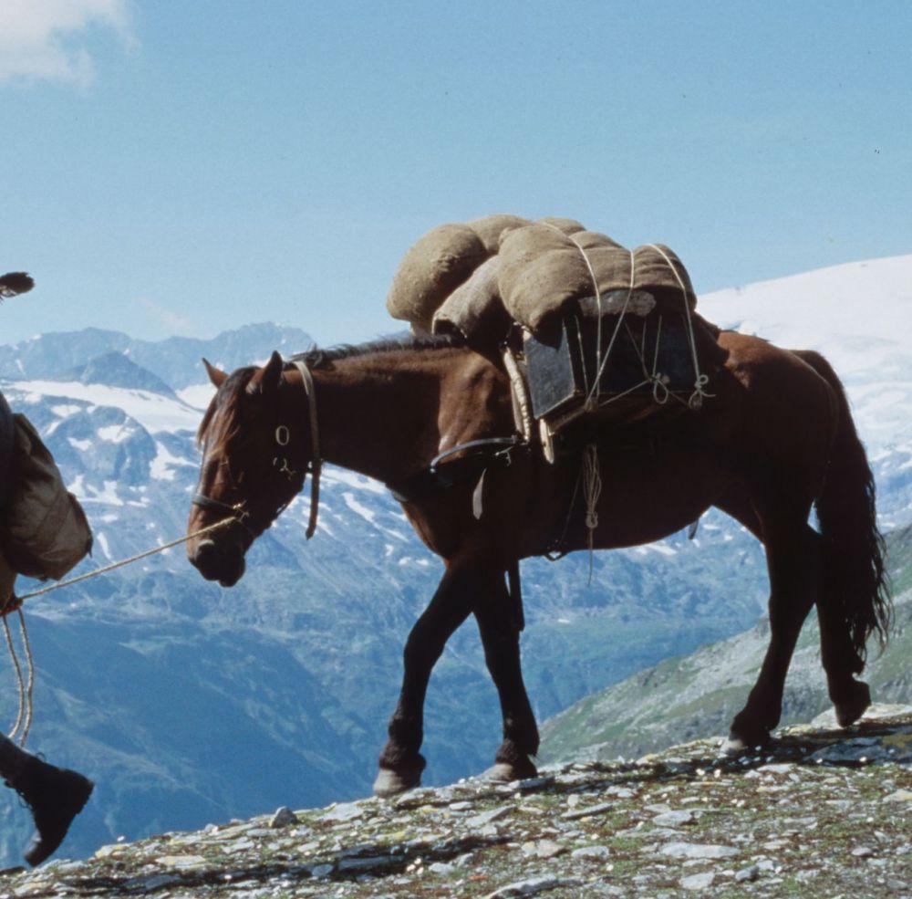 Säumer Sepp, © Ferienregion Nationalpark Hohe Tauern Salzburg