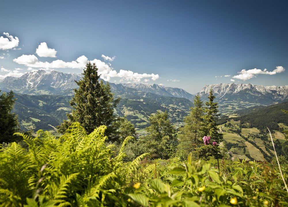 Panoramablick © Tourismusverband Sankt Johann-Alpendorf