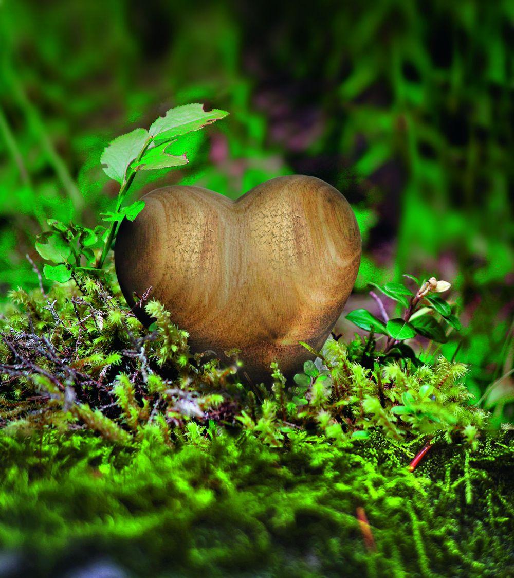 Holzherz-Herz vom Lebenswegtagebuch
