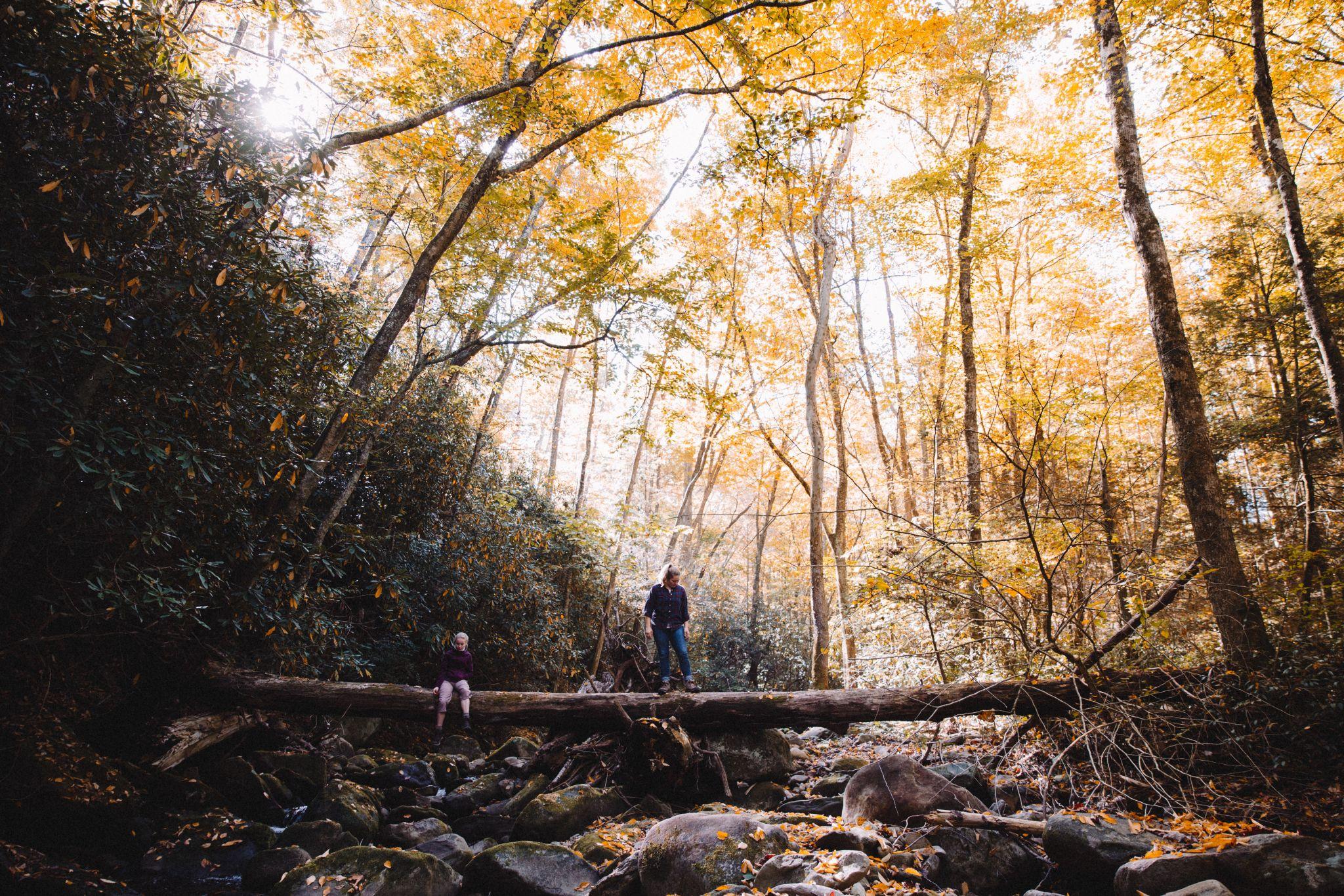 Raus in die Natur In den Bergen erleben Familien viel (c) Andrew Neel on Unsplash