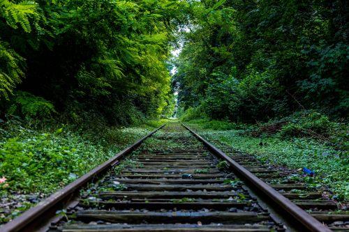 Schienen im Grünen, Unsplash