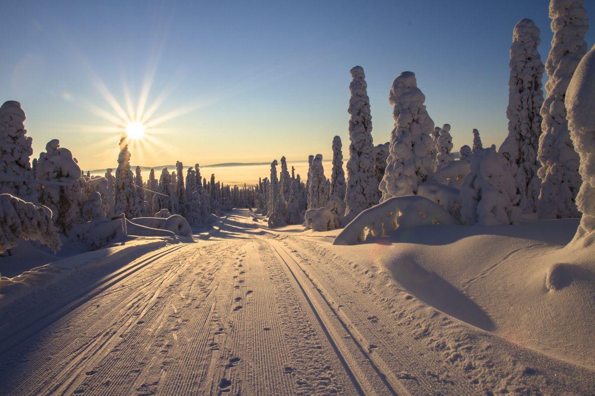 Winterlandschaft, Pexels