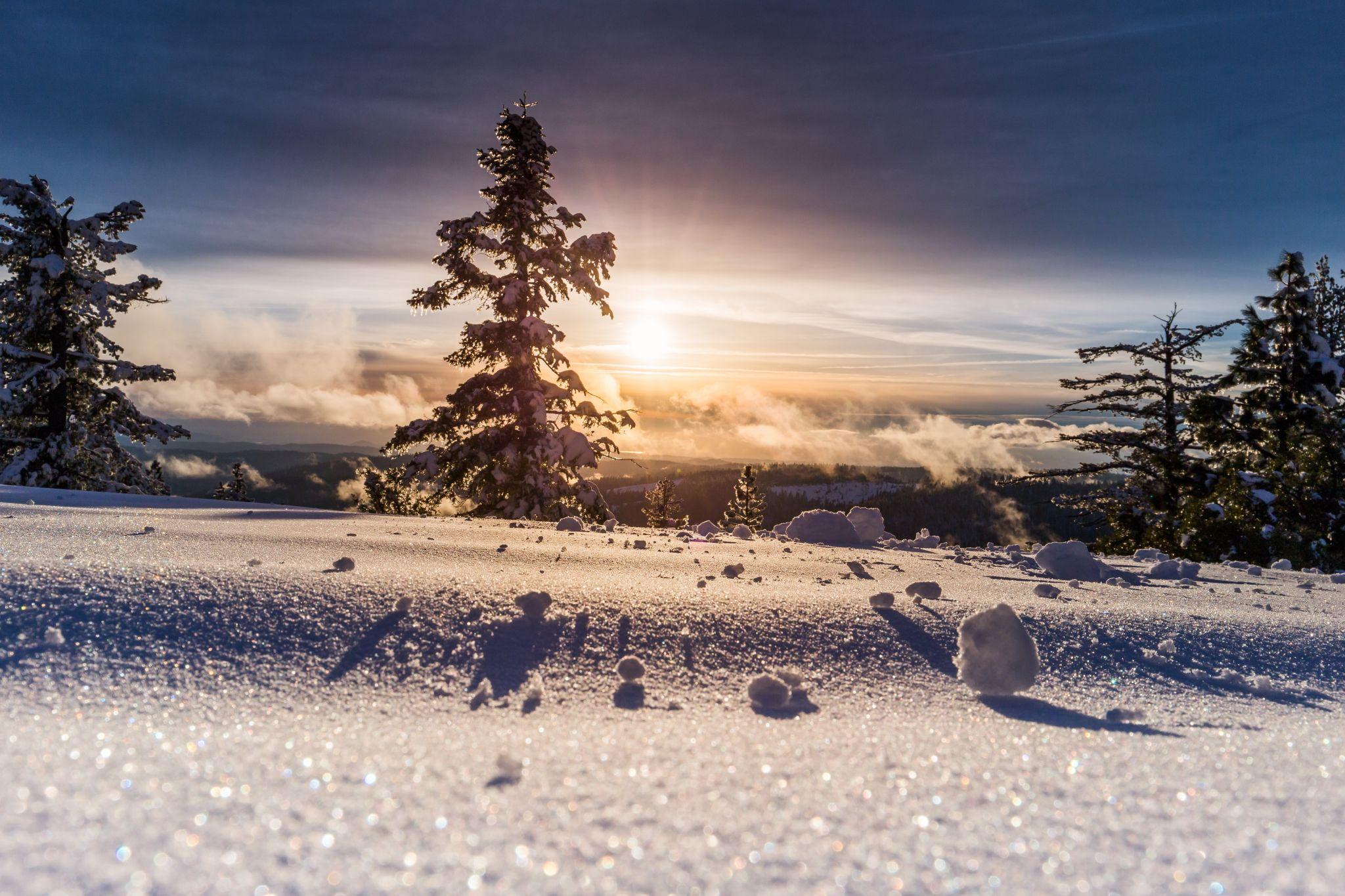 Winterlandschaft und Sonne, Unsplash