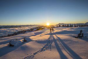 Egal ob du die Wintersonne beim Winterwandern, in Schneeschuhen, beim Langlaufen oder auf einer Skitour suchst: Die beste Auswahl findest du hier.