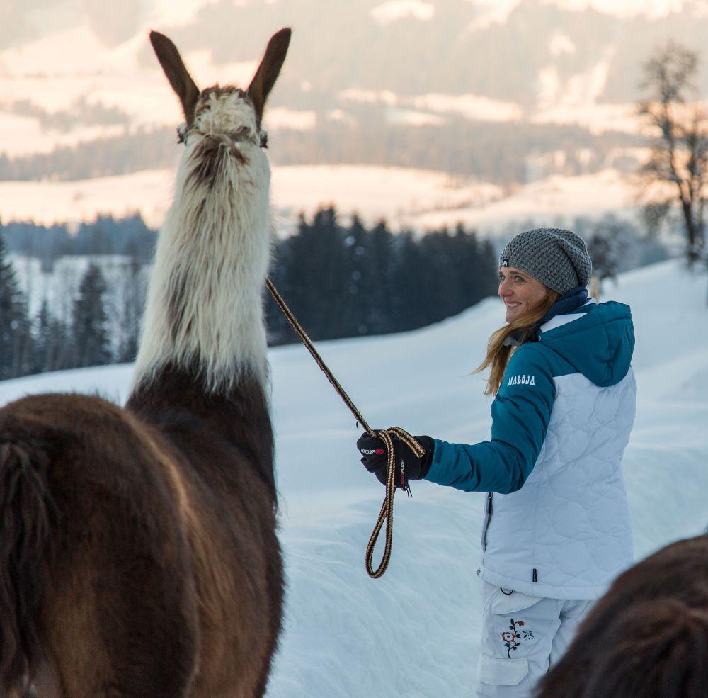Winterwandern mit Lamas © Sportalpen TVB PillerseeTal