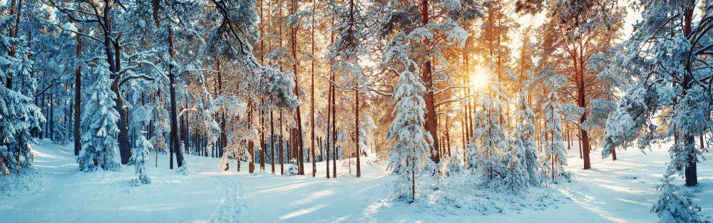 Winter, shutterstock