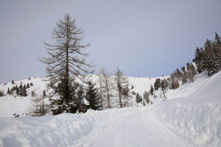 Loosbühel Winter © TVB Großarltal