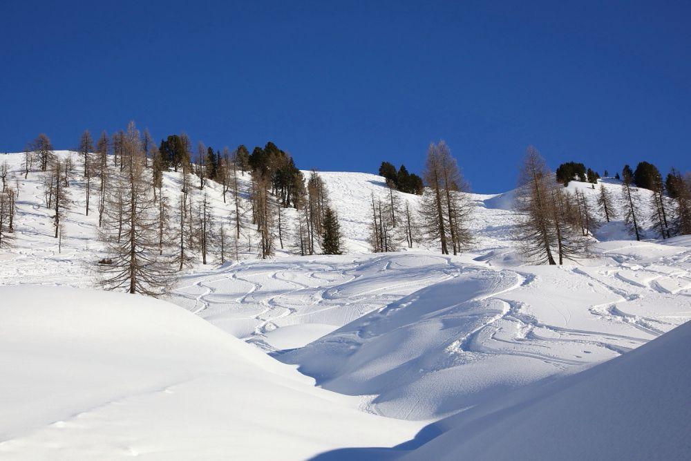 Spuren - Skitouren © TVB Großarltal