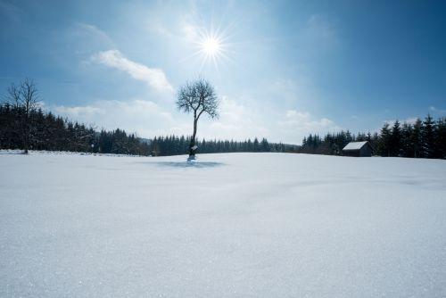 Winterlandschaft_Waldviertel © Waldviertel Tourismus, Studio Kerschbaum