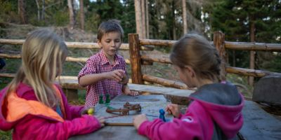 2018-10-18-SLT-Reportage-Gastein-Wald-by-Michael-Groessinger-IMG_7559