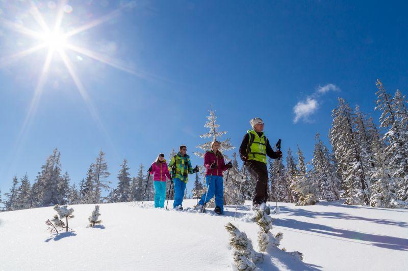 Der-Natur-auf-der-Spur_Schneeschuhtrail-Hofalmen-im-Bergdorf-Filzmoos_cCoenWeesjes_Filzmoos-Tourismus