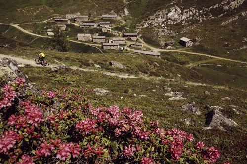 Tibet_Jagdhaus Nationalpark Hohe Tauern Osttirol © Nationalpark Hohe TauernTom Specht