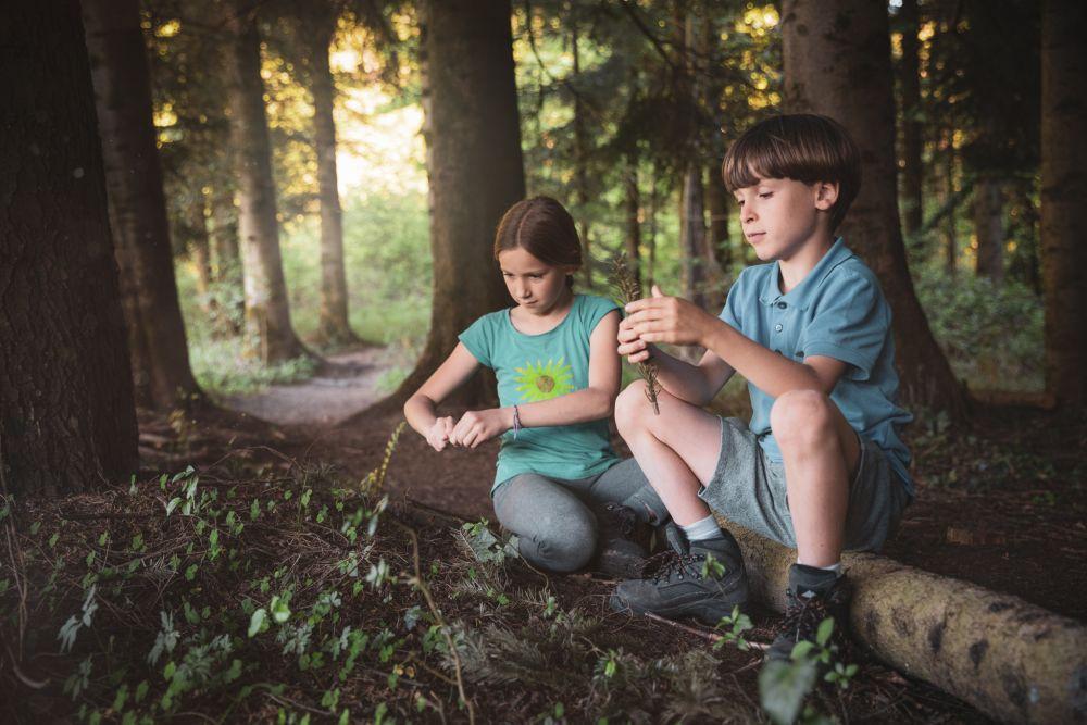 Spielend Wandern, Outdoor Spiele, Spielen im Wald, ©ÖWD, Tim Ertl