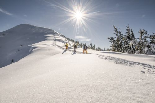 TVB Schladming_Skitour Rippetegg 001 © Gerhard Pilz (2019)
